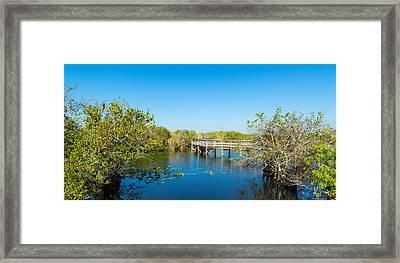 Anhinga Trail Boardwalk, Everglades Framed Print