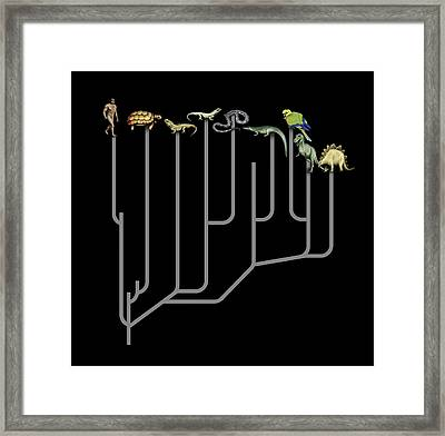 Animal Family Tree Framed Print