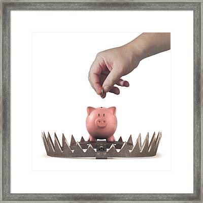 Animal Trap With Piggy Bank Framed Print by Ktsdesign