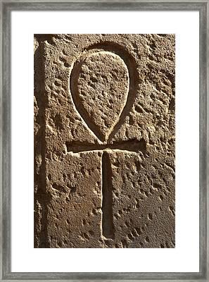Ankh Or Key Of Life Framed Print