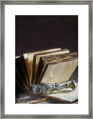 Antique Silver Owl Seal Framed Print by Amanda Elwell