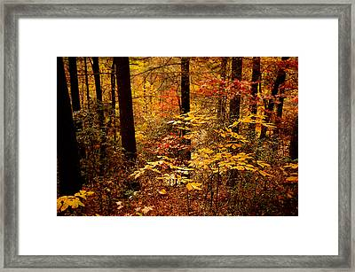Framed Print featuring the photograph Appalachian Fall by Phyllis Peterson
