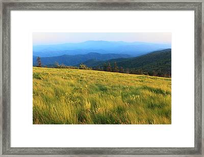 Appalachian Trail Round Bald Roan Mountain Framed Print by John Burk