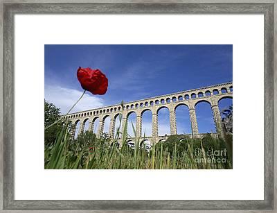 Aqueduct De Roquefavour Framed Print by Sami Sarkis