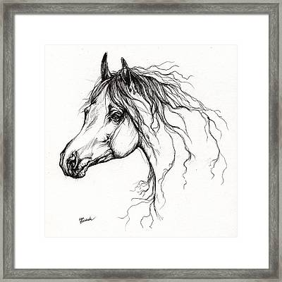 Arabian Horse Drawing 37 Framed Print by Angel  Tarantella