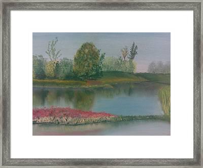 Arboretum Framed Print by Steve Hermann
