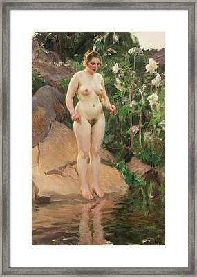 Archipelago Flower Framed Print by Anders Zorn