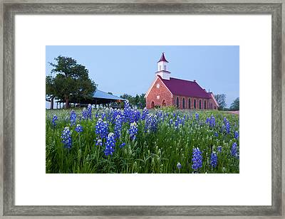 Art Methodist Church And Bluebonnets Framed Print