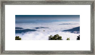 Ascending Hope Framed Print by Everett Houser