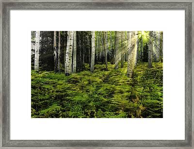 Aspen Sunrise Framed Print
