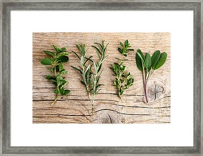 Assorted Fresh Herbs Framed Print