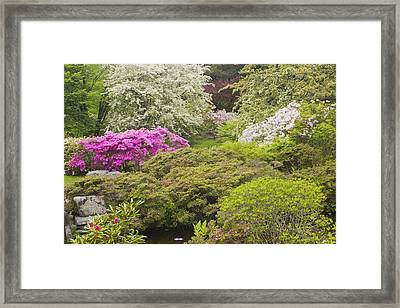 Asticou Azelea Garden - Northeast Harbor - Mount Desert Island - Maine Framed Print by Keith Webber Jr
