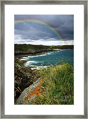 Atlantic Coast In Brittany Framed Print by Elena Elisseeva