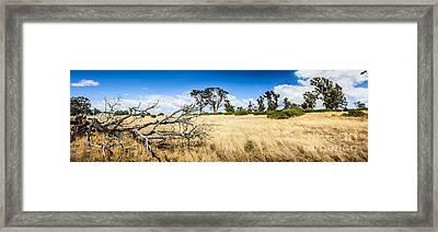 Australia Summer Landscape Of Rural Tasmania Framed Print by Jorgo Photography - Wall Art Gallery