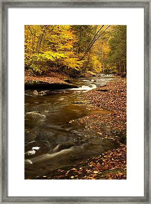 Autumn And Creek Framed Print by Amanda Kiplinger