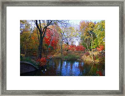 Autumn By The Creek Framed Print by Dora Sofia Caputo Photographic Art and Design