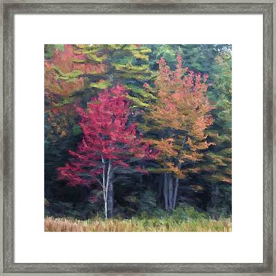 Autumn Color Painterly Effect Framed Print by Carol Leigh