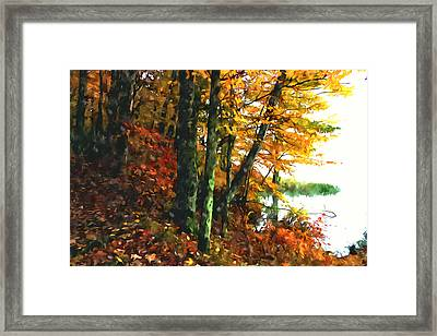 Autumn Colors In The Forest 1 Framed Print by Lanjee Chee
