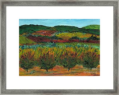 Autumn Colours Languedoc Framed Print