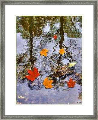 Autumn Framed Print by Daniel Janda