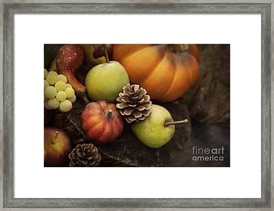 Autumn Fruit Framed Print