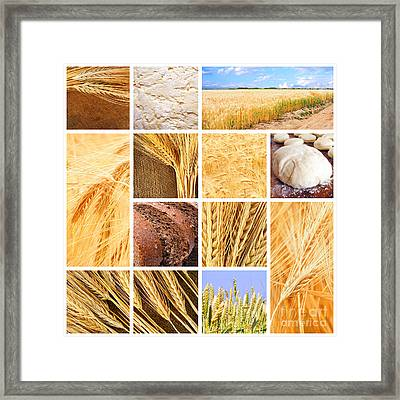 Autumn Harvest Collage Framed Print by Boon Mee