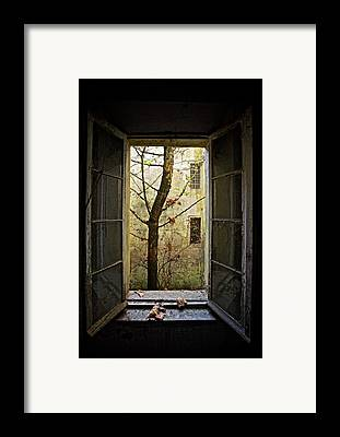 Asylum Framed Prints