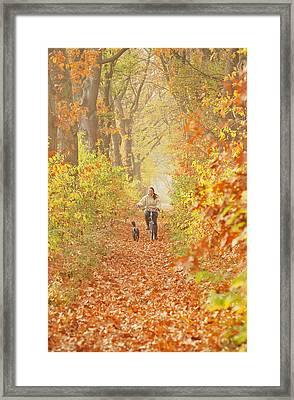 Autumn In Eindhoven Framed Print
