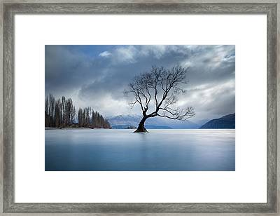 Autumn Lament Framed Print