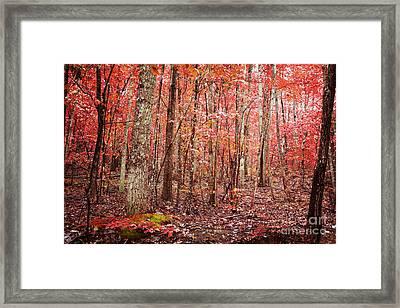 Autumn Landscape Framed Print by Kim Fearheiley