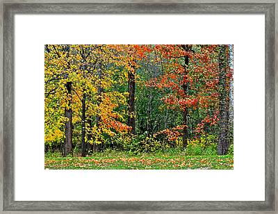 Autumn Landscape Framed Print by Frozen in Time Fine Art Photography