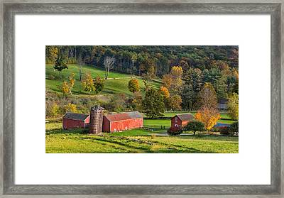 Autumn Light Framed Print by Bill Wakeley