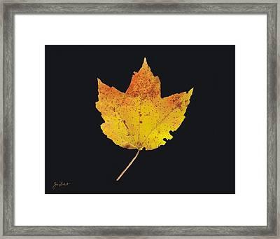 Autumn Mountain Maple Leaf Framed Print