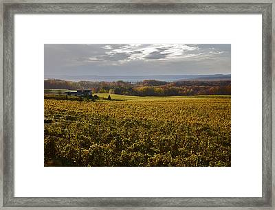 Autumn On Old Mission Peninsula  Framed Print