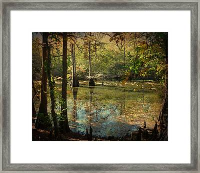 Autumn On The Bayou Framed Print by Terry Eve Tanner