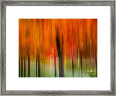 Autumn Park 2 Framed Print by Susan Cole Kelly Impressions