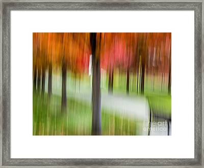Autumn Park 3 Framed Print