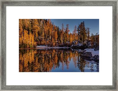 Autumn Reflected Framed Print by Mike Reid
