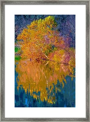 Autumn Reflections 2 Framed Print