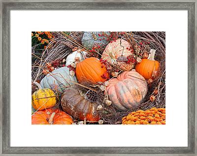 Autumn Scene Framed Print by Becky Lodes