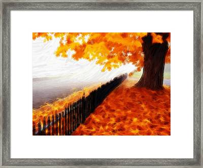 Autumn Framed Print by Steve K