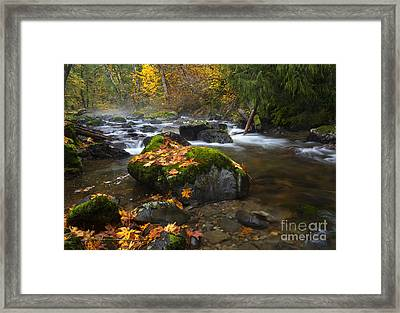 Autumn Stream Framed Print by Mike Dawson