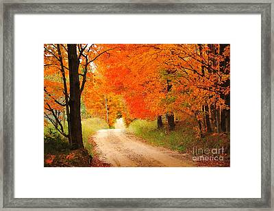 Framed Print featuring the photograph Autumn Trail by Terri Gostola