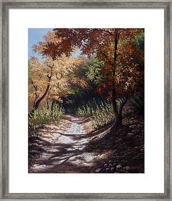 Autumn Trails Framed Print by Kyle Wood