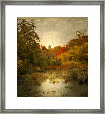 Autumn Wetlands Framed Print by Jessica Jenney