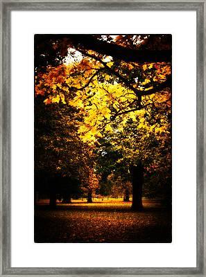 Autumnal Walks Framed Print