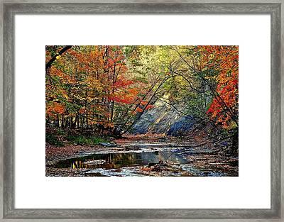 Autumns Splendor Framed Print