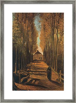 Avenue Of Poplars In Autumn Framed Print by Vincent van Gogh