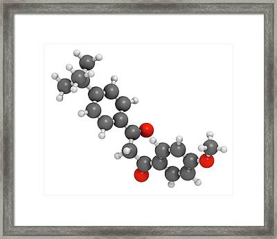 Avobenzone Sunscreen Molecule Framed Print by Molekuul
