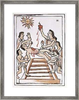 Aztec Ritual Sacrifice Framed Print by Granger